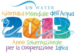 2013 - United Nations International Year of Water Cooperation